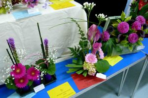 Melsonby show. 2014 150a