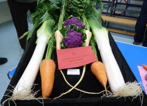 Melsonby show. 2014 206a
